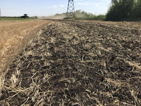 Отличное измельчение и заделка раститиельных остатков не смотря на жару в +35.